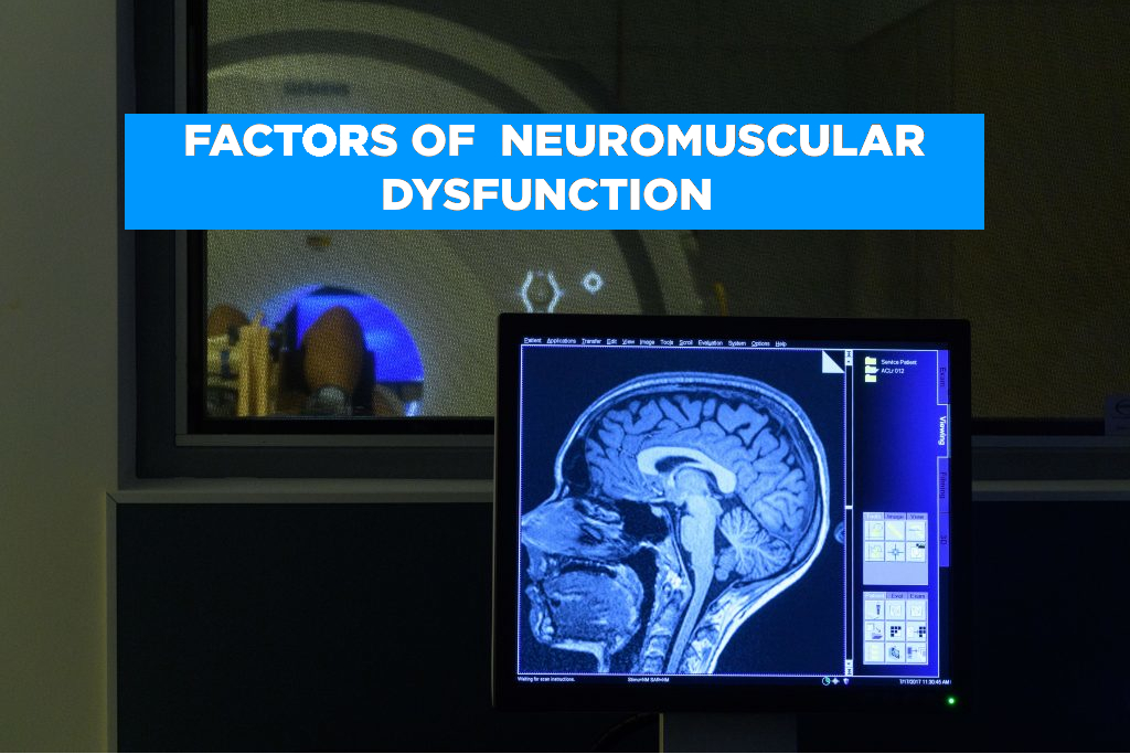 Factors of Neuromuscular Dysfunction